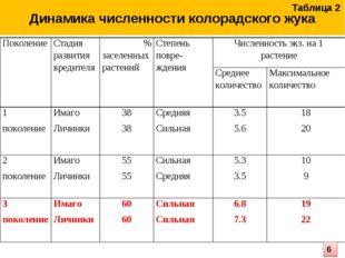 Динамика численности колорадского жука Таблица 2 6 ПоколениеСтадия развития