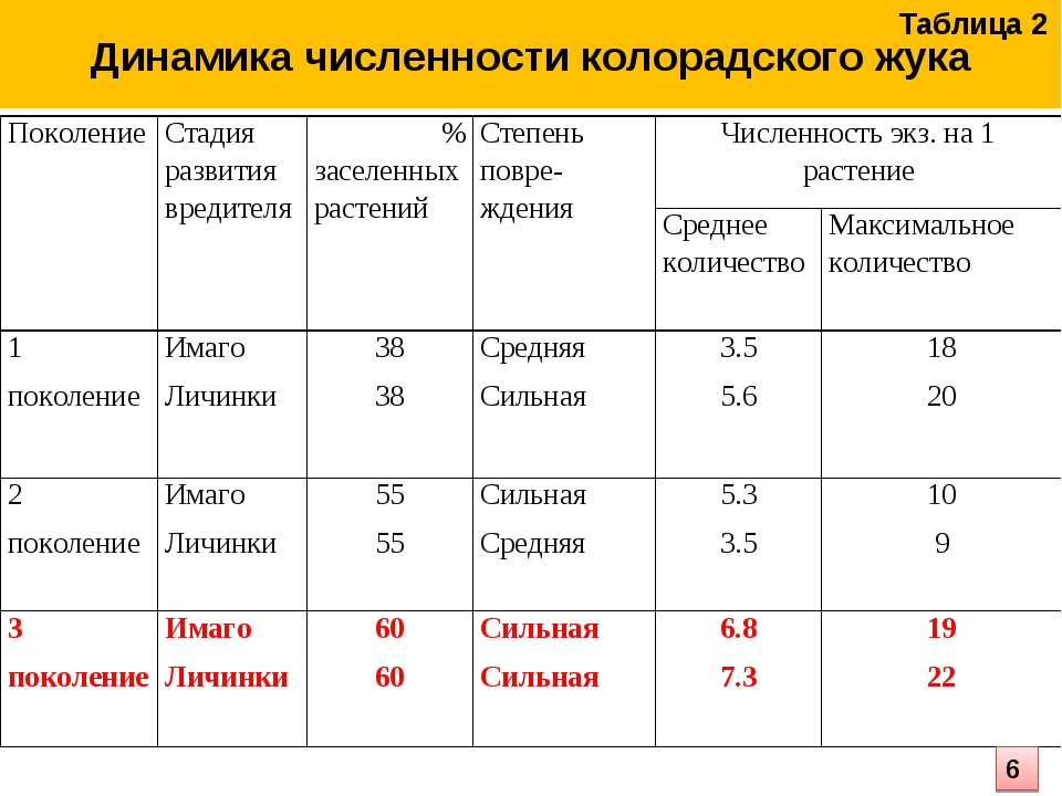 Динамика численности колорадского жука Таблица 2 6 ПоколениеСтадия развития...