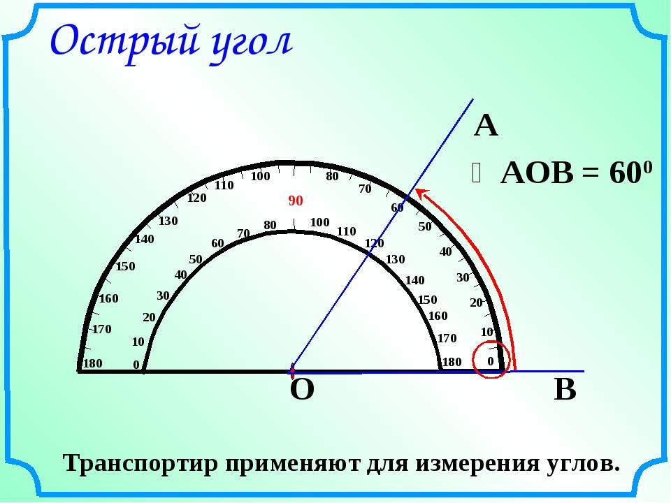 Острый угол Транспортир применяют для измерения углов.