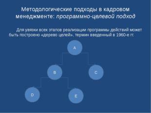 Методологические подходы в кадровом менеджменте: программно-целевой подход Д