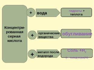 Концентри- рованная серная кислота + вода органические вещества металл после