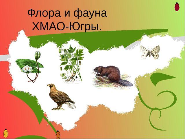 Флора и фауна ХМАО-Югры.
