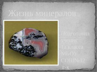 Подготовил ученик 1а класса МБОУ СОШ№12 г-к Кисловодска Фенев Климентий. Руко
