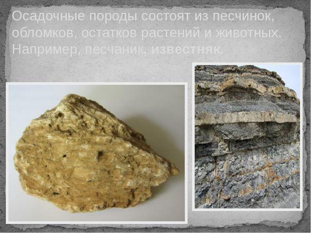 Осадочные породы состоят из песчинок, обломков, остатков растений и животных....