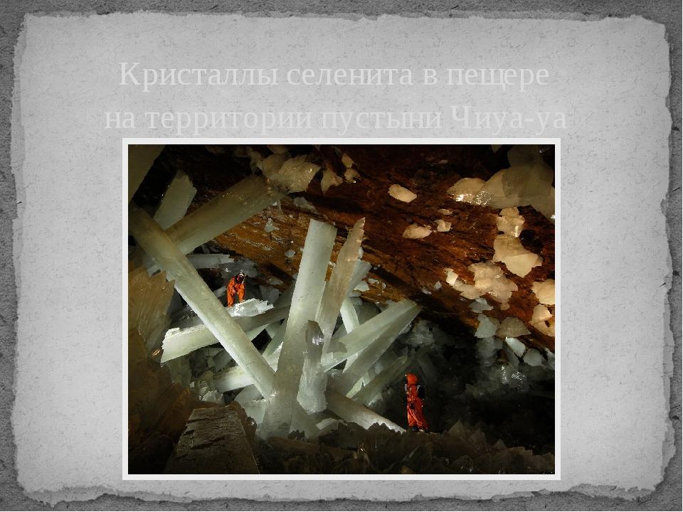 Кристаллы селенита в пещере на территории пустыни Чиуа-уа