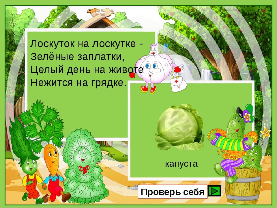 Лоскуток на лоскутке - Зелёные заплатки, Целый день на животе Нежится на гряд...