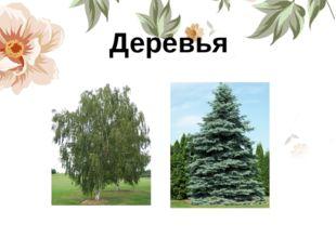 Деревья