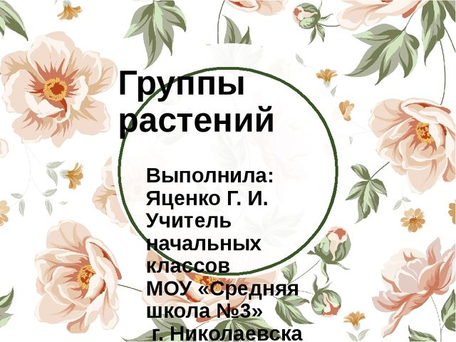 Группы растений Выполнила: Яценко Г. И. Учитель начальных классов МОУ «Средн...