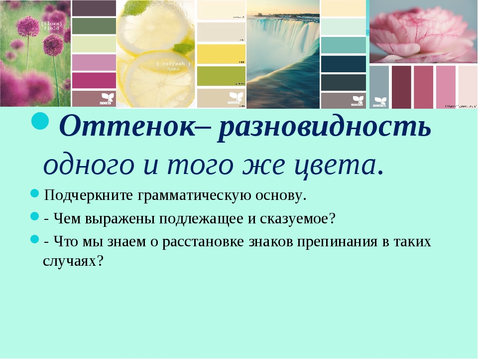 Оттенок– разновидность одного и того же цвета. Подчеркните грамматическую осн...