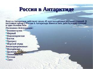 Россия в Антарктиде Всего в Антарктиде действует около 45 круглогодичных науч