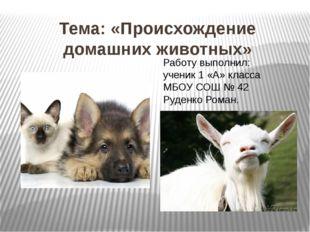 Тема: «Происхождение домашних животных» Работу выполнил: ученик 1 «А» класса