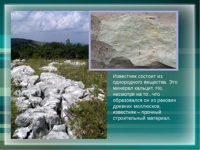 Известняк состоит из однородного вещества. Это минерал кальцит. Но, несмотря...