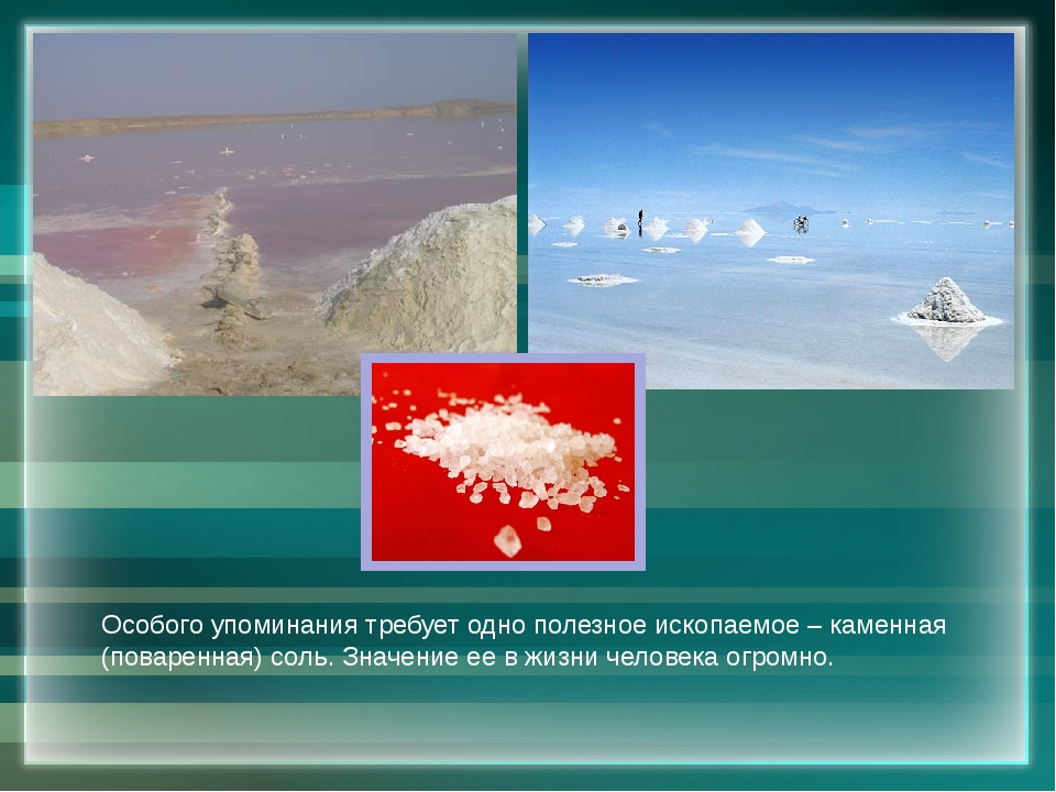 Особого упоминания требует одно полезное ископаемое – каменная (поваренная) с...