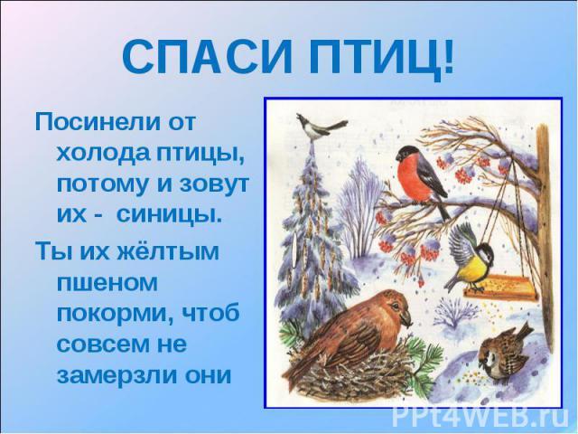 hello_html_11c70888.jpg