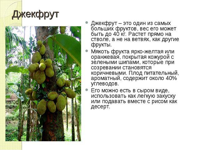 Джекфрут Джекфрут – это один из самых больших фруктов, вес его может быть до...