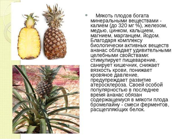 Мякоть плодов богата минеральными веществами - калием (до 320 мг %), железом...