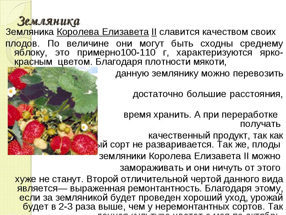 Земляника Земляника Королева Елизавета II славится качеством своих плодов. По...
