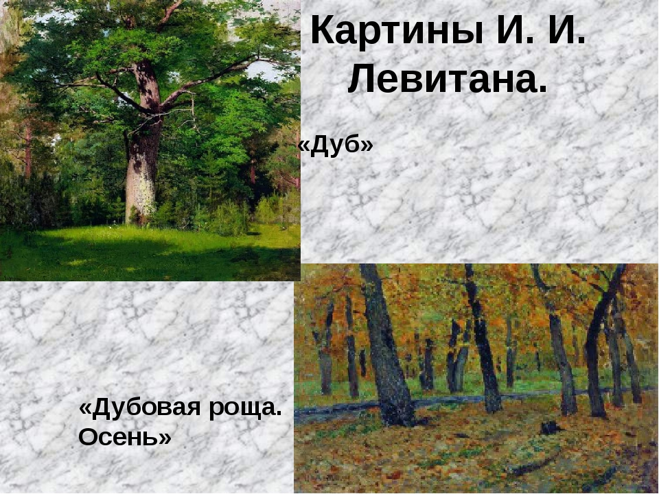 Картины И. И. Левитана. «Дубовая роща. Осень» «Дуб»