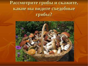 Рассмотрите грибы и скажите, какие вы видите съедобные грибы?