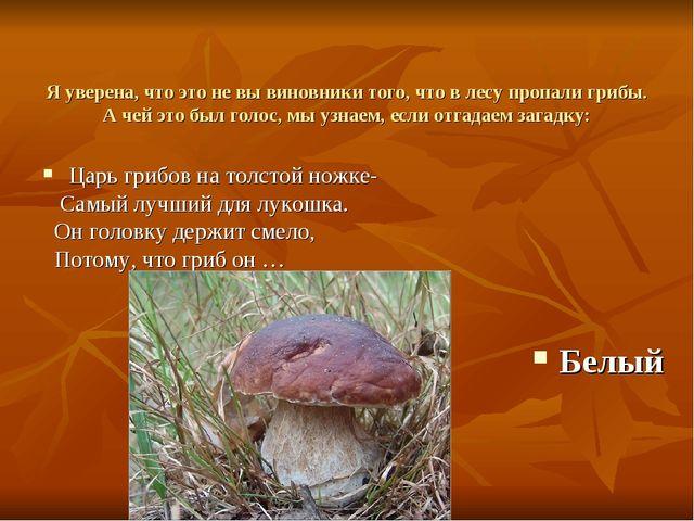 Я уверена, что это не вы виновники того, что в лесу пропали грибы. А чей это...