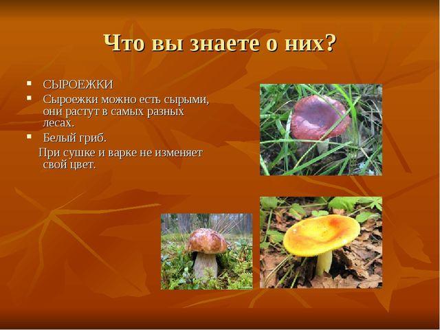 Что вы знаете о них? СЫРОЕЖКИ Сыроежки можно есть сырыми, они растут в самых...