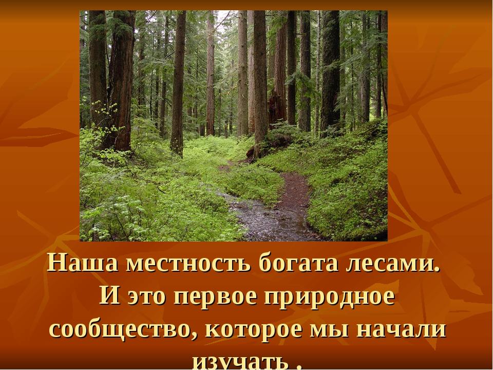 Наша местность богата лесами. И это первое природное сообщество, которое мы н...