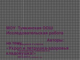 МОУ Тумкинская ООШ Исследовательская работа на тему «Укроп и петрушка-здоровь