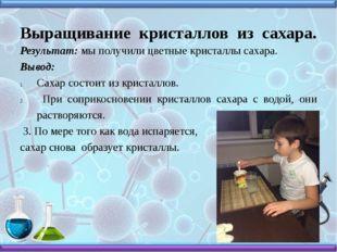 Выращивание кристаллов из сахара. Результат: мы получили цветные кристаллы са