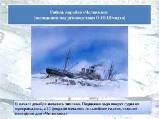 В начале декабря началась зимовка. Подвижки льда вокруг судна не прекращались