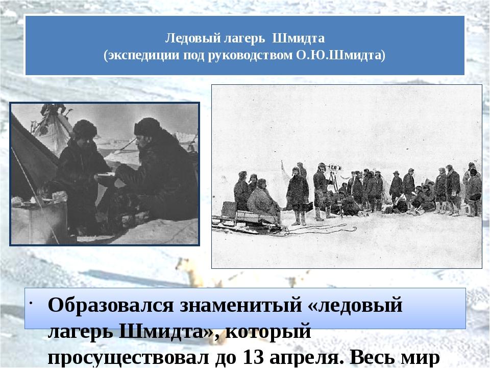 Образовался знаменитый «ледовый лагерь Шмидта», который просуществовал до 13...