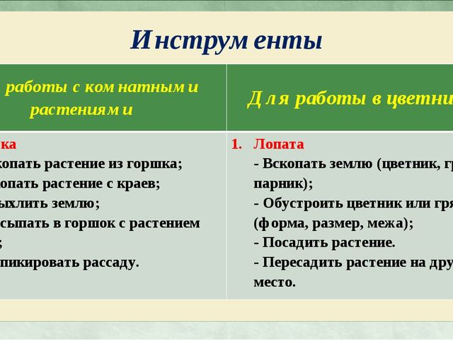 Инструменты Для работы с комнатными растениямиДля работы в цветниках Лопатка...