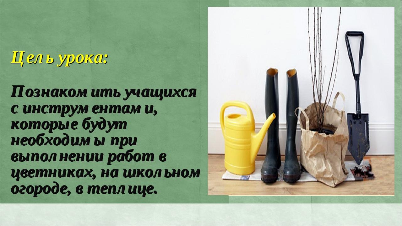 Цель урока: Познакомить учащихся с инструментами, которые будут необходимы пр...