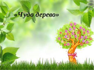 «Чудо дерево»