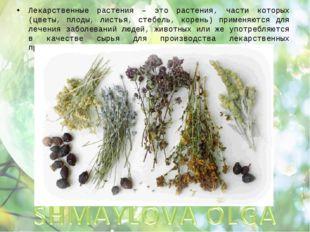 Лекарственные растения – это растения, части которых (цветы, плоды, листья, с
