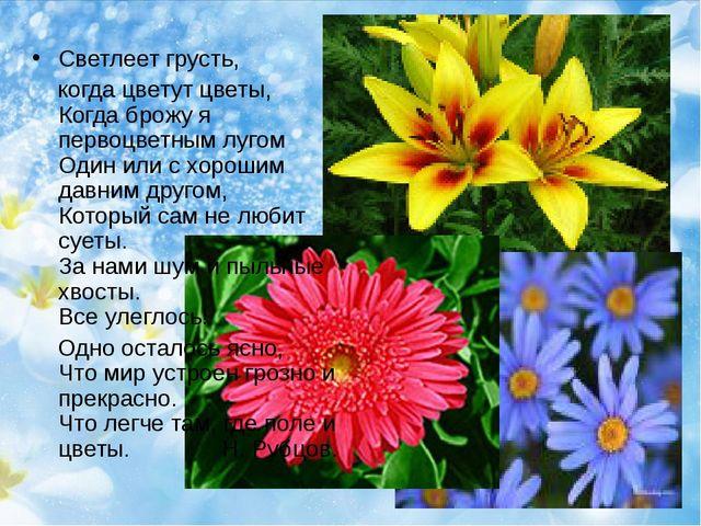 Светлеет грусть, когда цветут цветы, Когда брожу я первоцветным лугом Один ил...