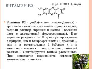 ВИТАМИН В2. Витамин В2 ( рибофлавин, лактофлавин) - оранжево - желтые кристал