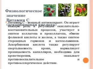 Физиологическое значение Витамин С (аскорбиновая кислота) Витамин С - мощный