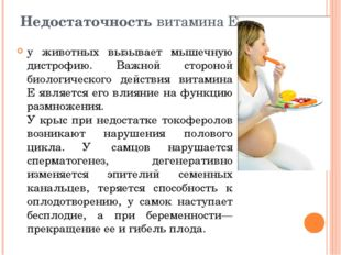 Недостаточность витамина Е у животных вызывает мышечную дистрофию. Важной сто