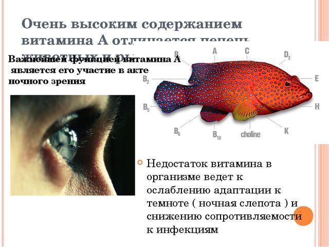 Очень высоким содержанием витамина А отличается печень животных и рыб. Недост...