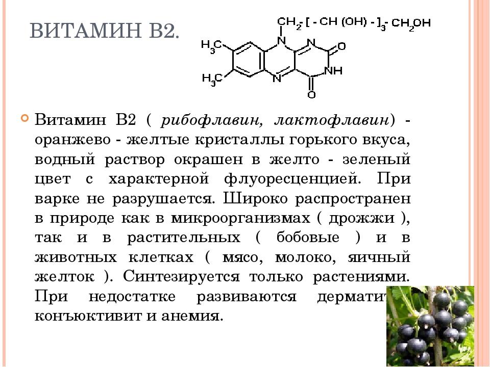 ВИТАМИН В2. Витамин В2 ( рибофлавин, лактофлавин) - оранжево - желтые кристал...