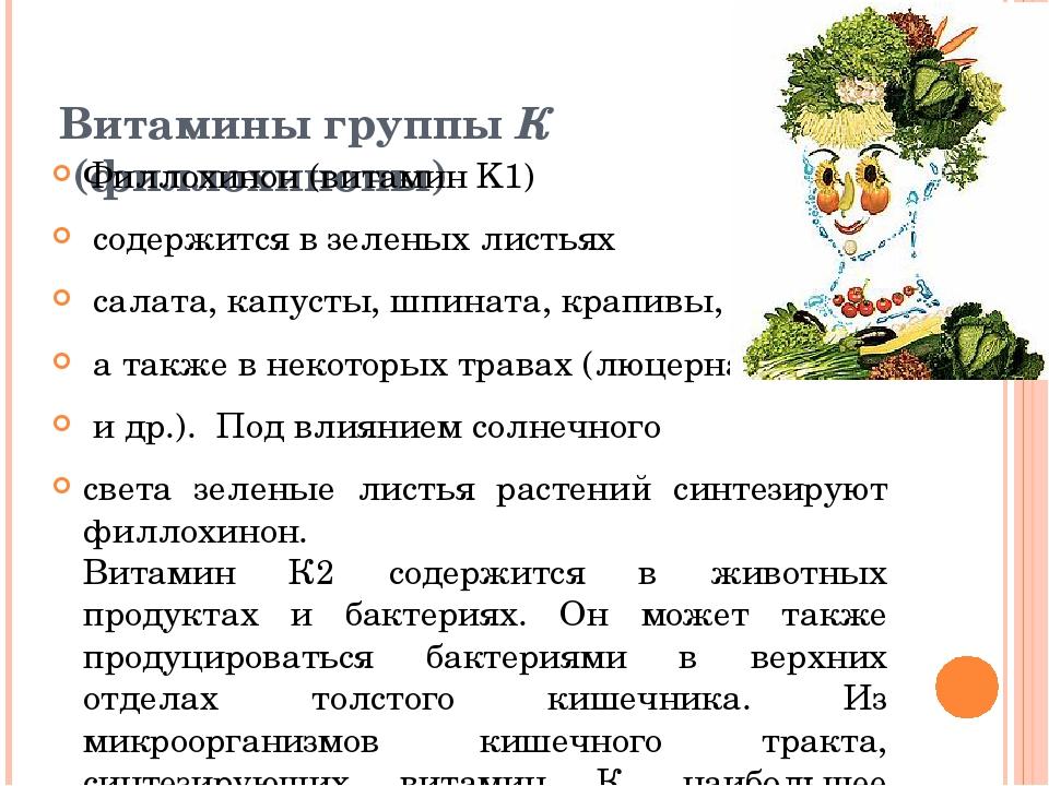 Витамины группы К (филлохиноны) Филлохинон (витамин K1) содержится в зеленых...