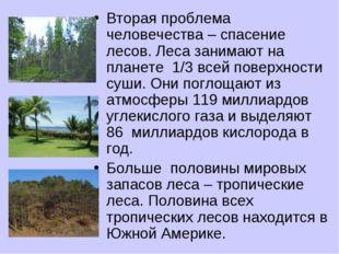 Вторая проблема человечества – спасение лесов. Леса занимают на планете 1/3 в