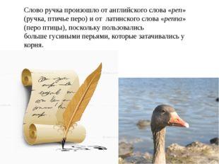 Слово ручка произошло от английского слова «pen» (ручка, птичье перо) и от ла