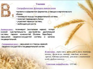 Специфические функции витаминов является коферментом ферментов углеводно-энер