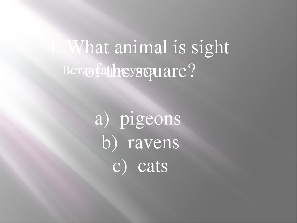 4. What animal is sight of the square? a) pigeons b) ravens c) cats