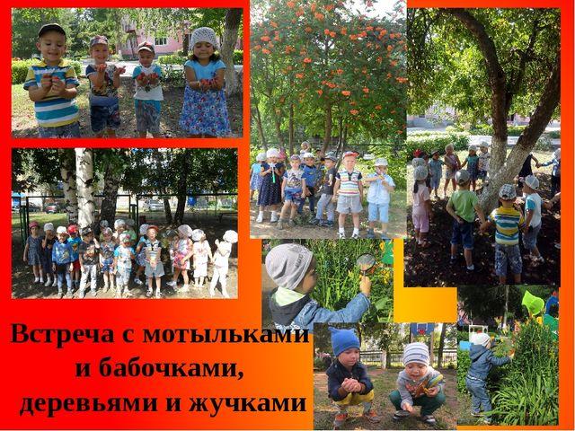 Встреча с мотыльками и бабочками, деревьями и жучками