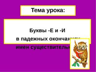 Тема урока: Буквы -Е и -И в падежных окончаниях имен существительных.