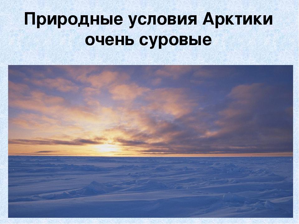 Природные условия Арктики очень суровые
