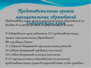 Представительные органы муниципальных образований Хабаровского края Представи