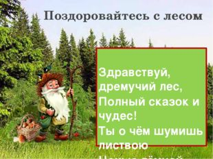 Здравствуй, дремучий лес, Полный сказок и чудес! Ты о чём шумишь листвою Ноч
